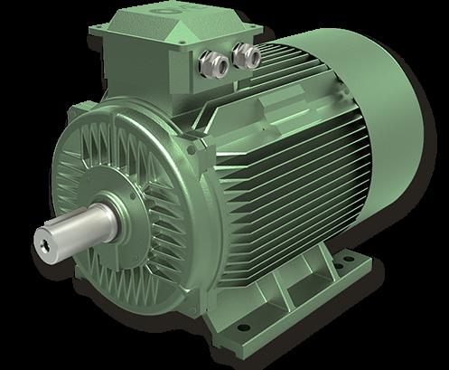 IE4 Super Premium Motoren